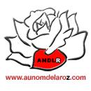 aunomdelarose300